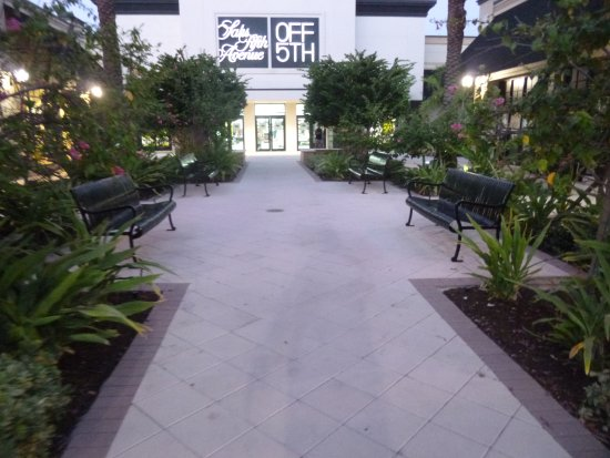 Town Center Aventura: Benches, plants, and walkways  Town Center  near Saks