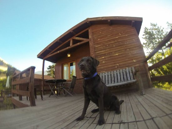 L'Auberge Des Cedres: The middle cabin I used, my dog standing on the terrace.