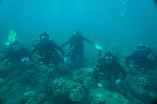 Fathom Five Divers : Group shot!
