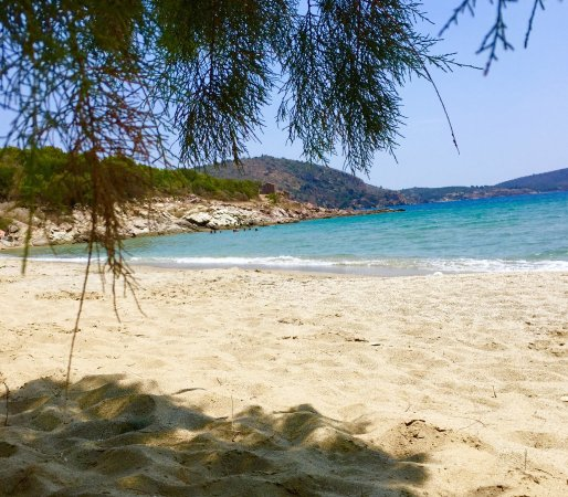 Skoutari, Greece: Very clean sandy beach, shallow and great for swimming - few trees for shade. Car park and taver