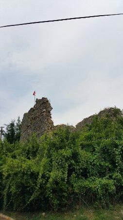 Akcakoca