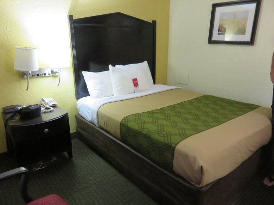Econo Lodge: Queen room
