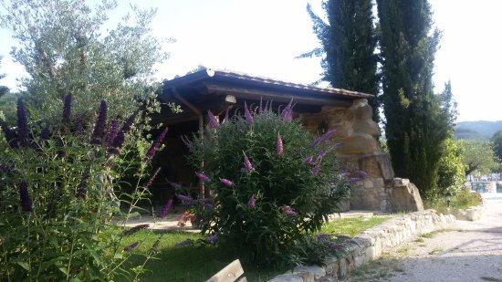 Le Querce di Assisi صورة