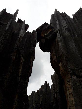 钟灵山森林公园
