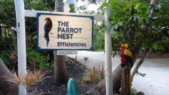 Parrot Nest Photo
