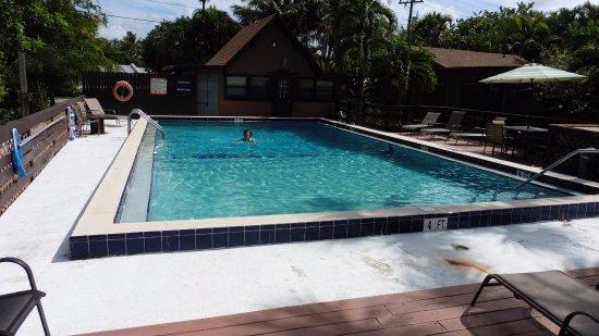 Parrot Nest: Sister hotel pool