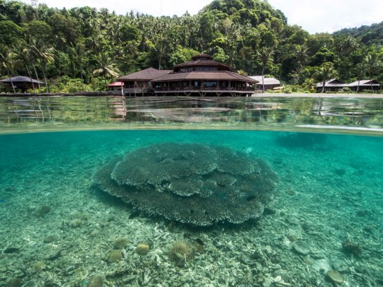 Kungkungan Bay Resort Photo