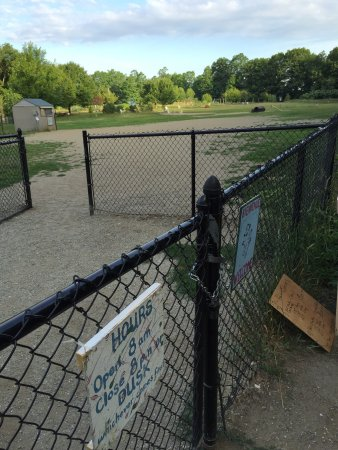 Starr Farm Dog Park