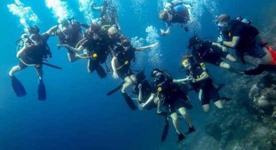 Blue Marlin Dive Gili Trawangan: photo0.jpg