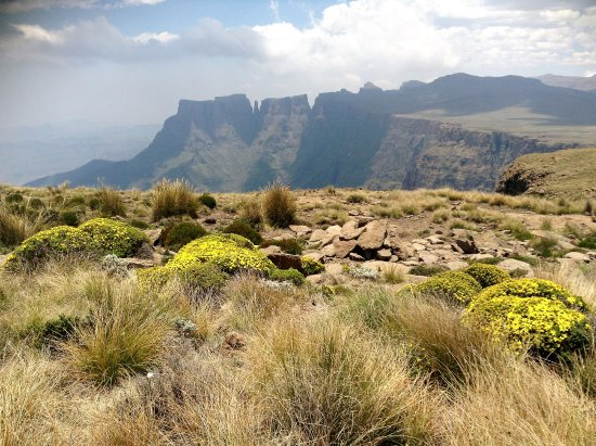 Drakensberg Region, Zuid-Afrika: At the top of Amphitheatre