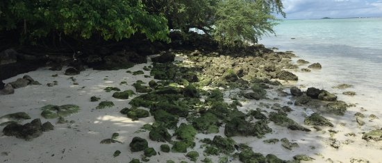 Gizo, Kepulauan Solomon: photo3.jpg