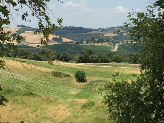 Santa Vittoria d'Alba, Italië: Lekker eten met locale Producten! Super locatie en mooie vergezichten! Aanrader!!!