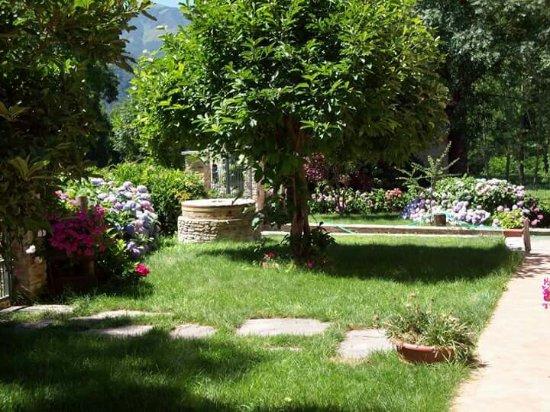 Gaiola, Italia: Mulino Delle Ortensie