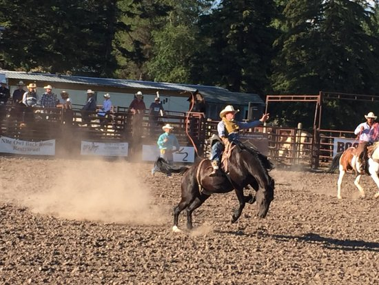 Bar W Guest Ranch : Rodeo in Columbia Falls