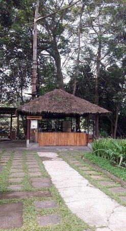 Green Forest Resort: photo0.jpg