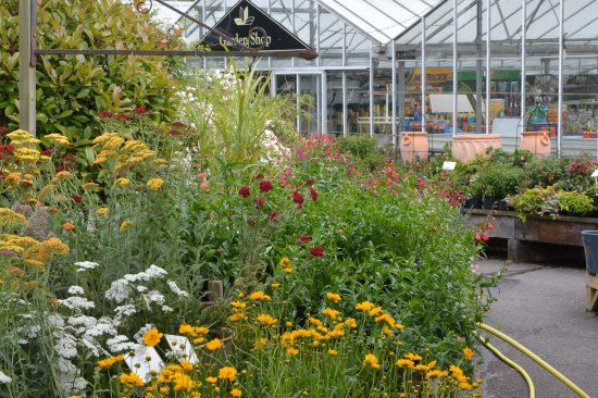 Welcome to Lowden Garden Centre