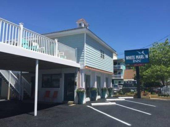 White Marlin Inn Photo