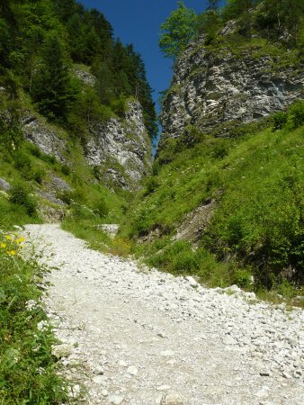 Szopczanski Gorge : Fragment wąwozu