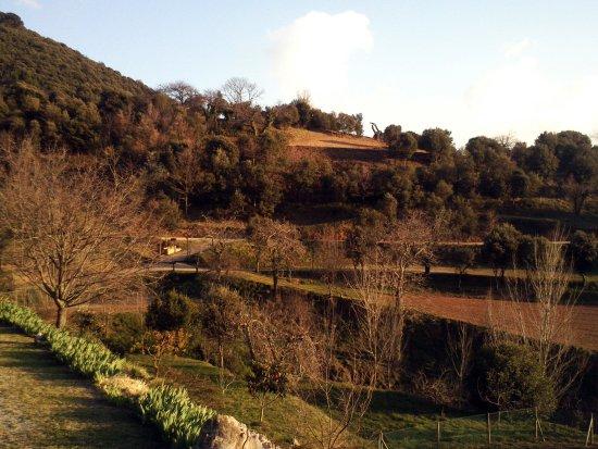 Canoves i Samalus 사진
