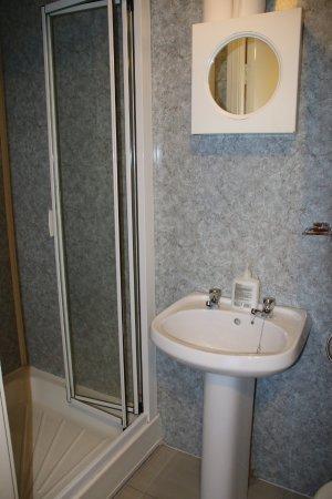 Botanic View B & B: shower