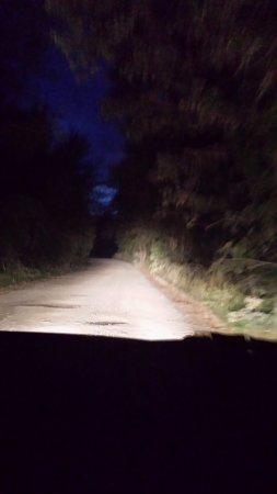 La Casella, Eco Resort: Estrada de chão à noite