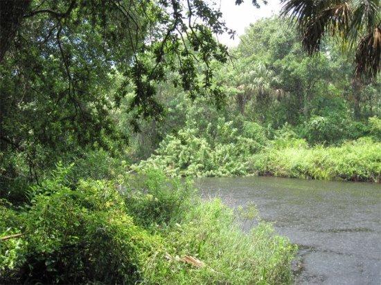 Rye Preserve