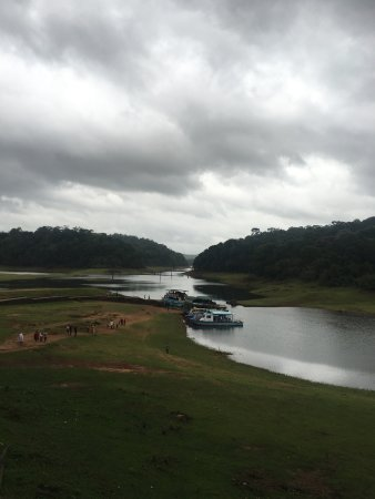 Periyar Tiger Reserve: photo2.jpg