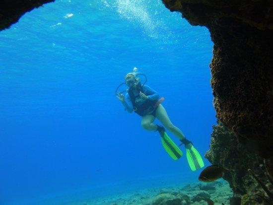 Pepe Scuba Dive Shop : Scuba diving opens a whole new world of God's beautiful undersea pleasures.