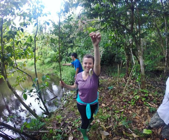 Allpahuayo Mishana National Reserve: Fishing in the second day!