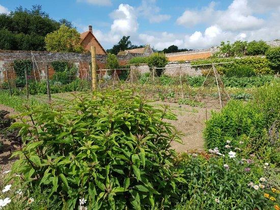 Seine-Maritime, France: Le Jardin Potager de Miromesnil