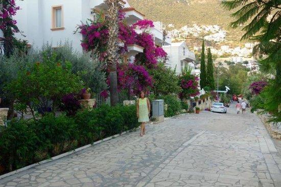 Hotel Dionysia: Side Road yo Hotel