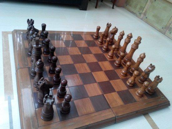Hotel Shree Leela International: Chess at hotel