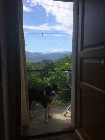 Ameno, İtalya: photo0.jpg