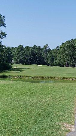 Blackmoor Golf Club: 20160706_110840_large.jpg