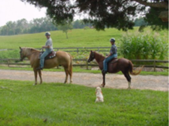 Cornerstone Farm: Horseback riding