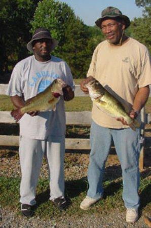 Cornerstone Farm: BIG bass