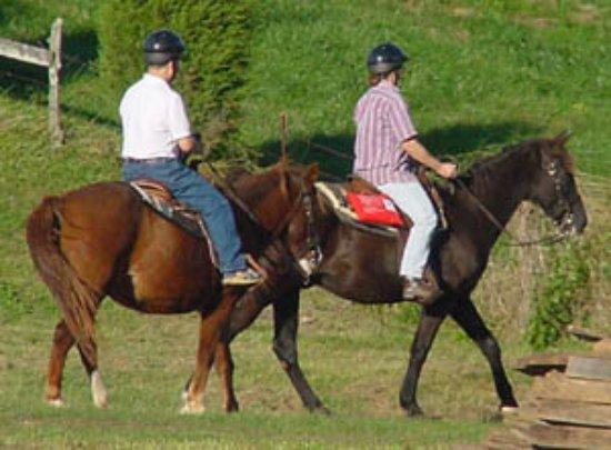 Red Oak, VA: Trail rides