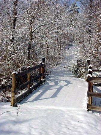 Red Oak, VA: Open all year!