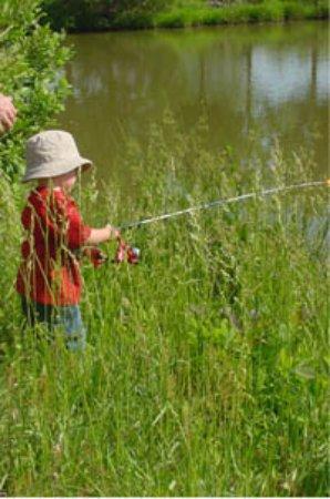 Red Oak, Вирджиния: Your first fish catch