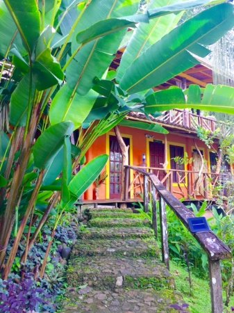 Isla San Cristobal, Panamá: Hideaway pathway