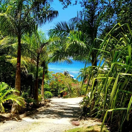 Castaways Cove: IMG_20160616_113808_large.jpg