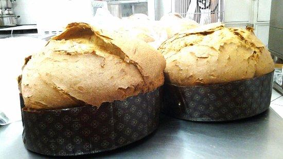 Casapulla, อิตาลี: pan (n ) di bufala appena sfornati