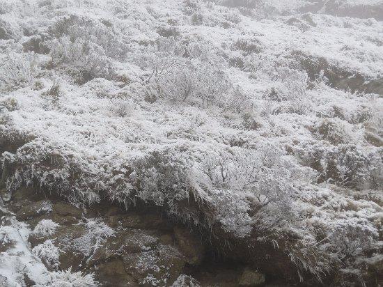 Drakensberg Nature Tours