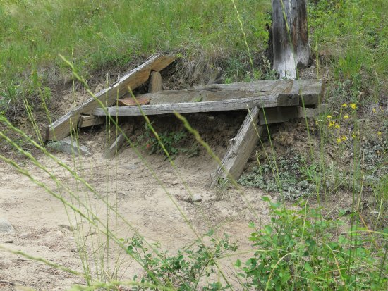 Kimberley Riverside Campground: Beautiful trails complete with benches to enjoy the views.