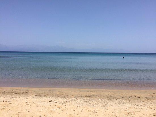 Вид, пляж и новые друзья