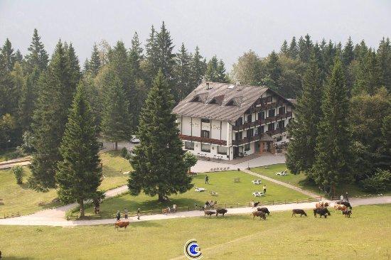 Piccola Baita: Vista dell'albergo dall'alto