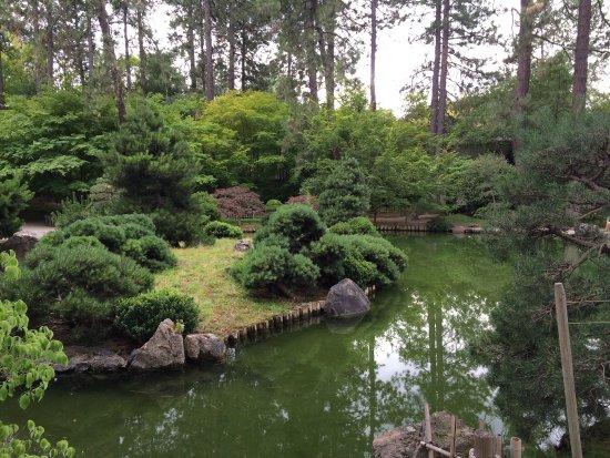 Manito Park: photo1.jpg