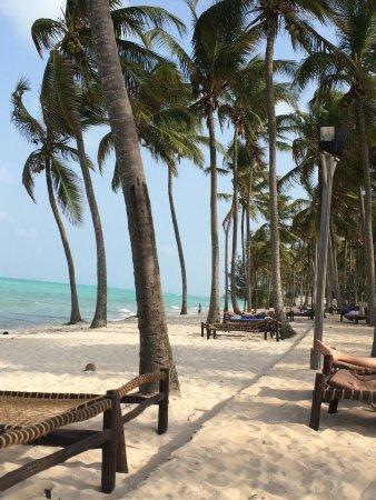 Karafuu Beach Resort and Spa: IMG_4071_large.jpg