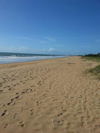 Moore Park Beach, Αυστραλία: the beach