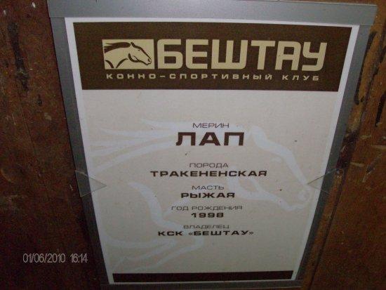Lermontov, Russia: Лап...и он действительно лапуля